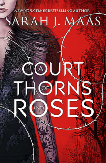A Court Of Thorns & Roses.png