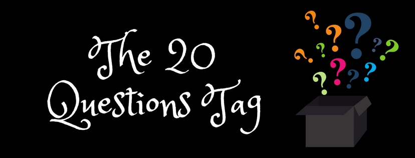 The 20 Questions Tag